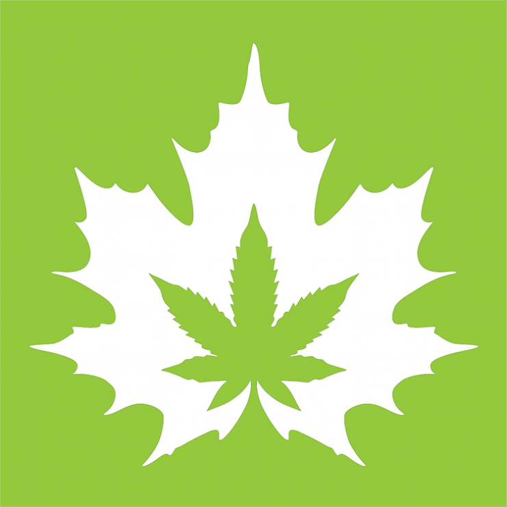 The House of Cannabis – 66 Dunlop St – Barrie